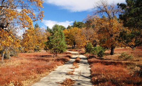 가을 맞이 여행, 애플파이의 고장 '줄리안' 가는 길