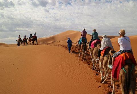 """노마드가 이끄는 낙타를 타고 """"사막 횡단 체험"""""""